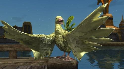 The Quacken Duck Mount